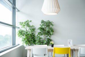 donnabio.com-livingroom